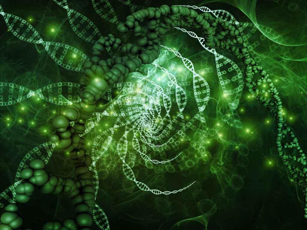 rem-science-page-image.jpg