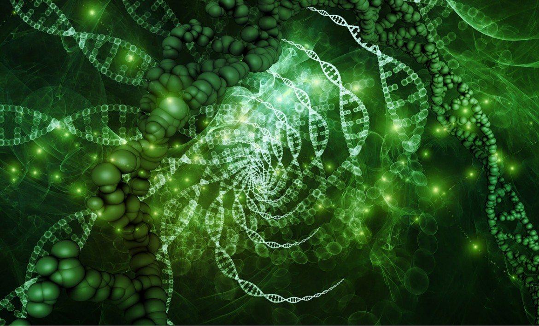 REM-Tuition-Biology-Slider.jpg